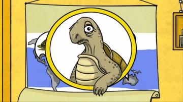 Сколько живут черепахи? - Профессор Почемушкин