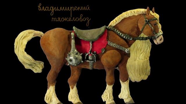 Мульти-Россия - Владимирская область