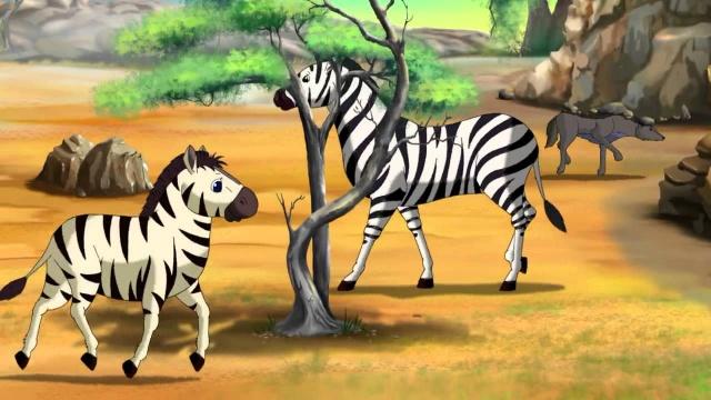 Зебра. Маленькие уроки живой природы