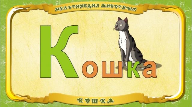 Мультипедия животных. Буква - К Кошка