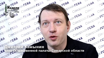 Дмитрий Камынин, Общественная палата Самарской области