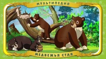 Мультипедия животных. Медведь (Уроки тётушки Совы)