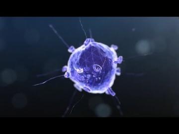 Волшебная лаборатория - Нанотехнология - Экология (Часть 5)