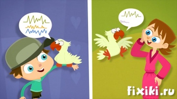 Фиксики - О попугаях