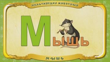 Мультипедия животных. Буква М - Мышь